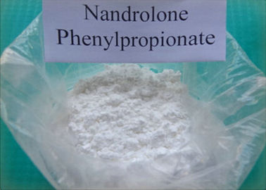 Injizierbarer Steroid-Pulver Nandrolone Phenylpropionate CAS 62-90-8